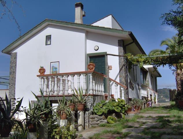 Camere e piscina - Nocera Terinese - Bed & Breakfast