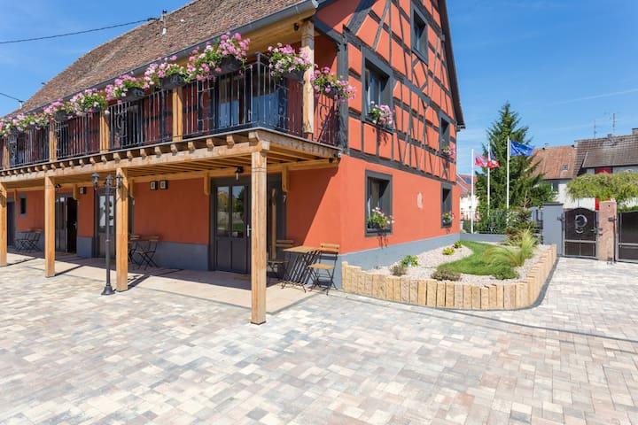 Charming apartment located Ried 7 - Holtzwihr - Leilighet