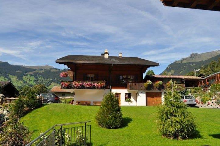 1-Zimmerwohnung in Chalet - Grindelwald - Apartemen