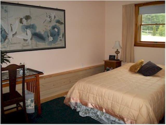 Spacious Guest room - Barnet