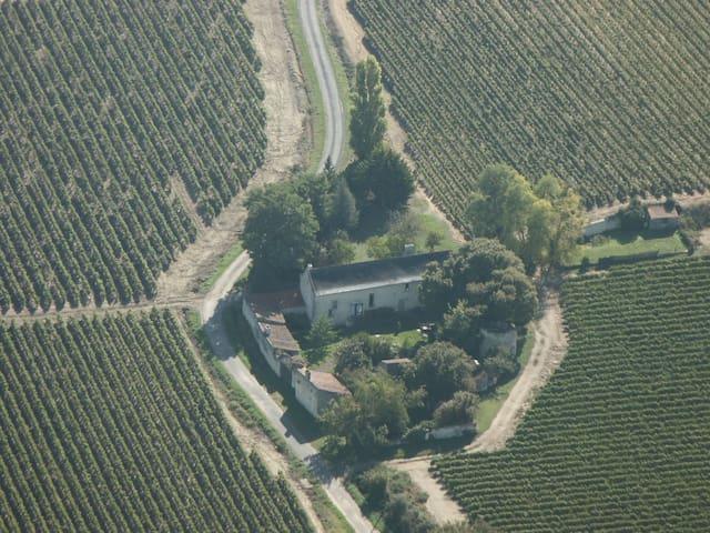 B&B Saumur Vineyards Loire Valley - Saumur - Oda + Kahvaltı