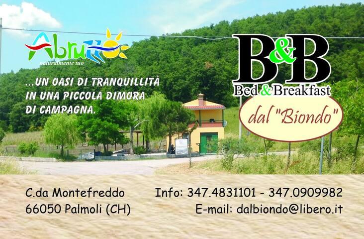 Vacanza e relax a Palmoli - Palmoli - Oda + Kahvaltı