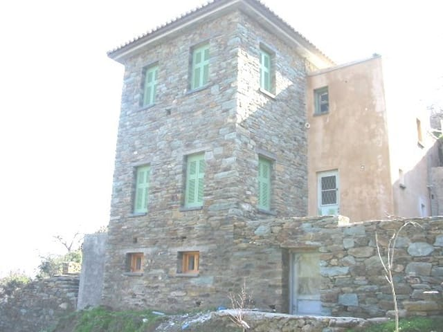 Stone house, big garden, near beach - Andros Stenies  - Huis