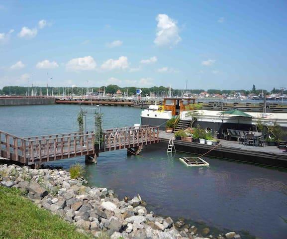Kapitäne Haus auf Hausboot private studio+parking - Amsterdam - Boot
