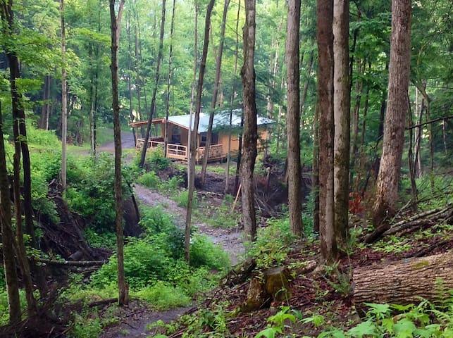 Cabin Creek Getaway (Letchworth) - Dalton - Cabane