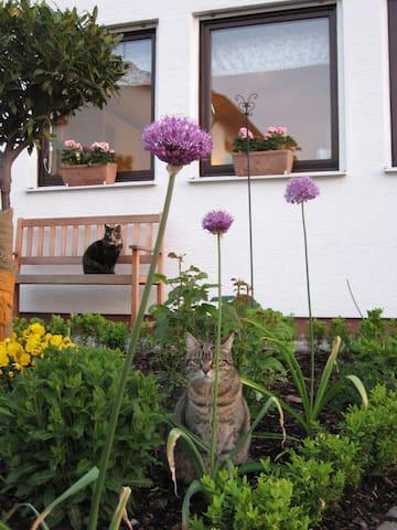 """Ferienwohnung """"Rita's Garten"""" - Zweibrücken - Apartamento"""