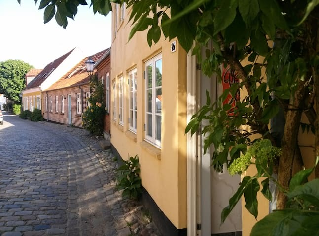 RIBEHUSET: CHARMING PRIVATE APPARTMENT 1.FLOOR - Ribe - Bed & Breakfast