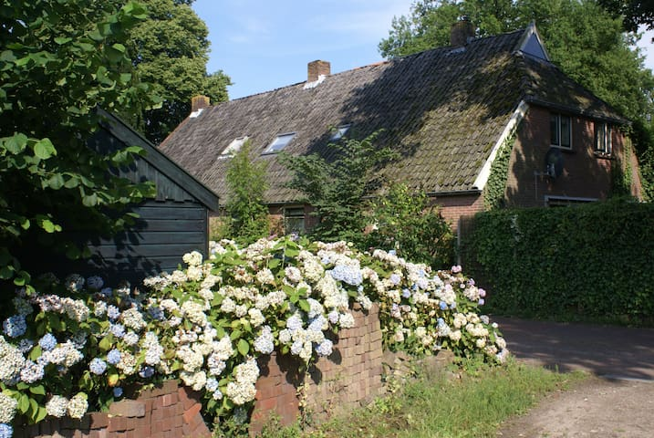 Under the Oaks - a farmhouse in ancient Diever - Diever - Hus