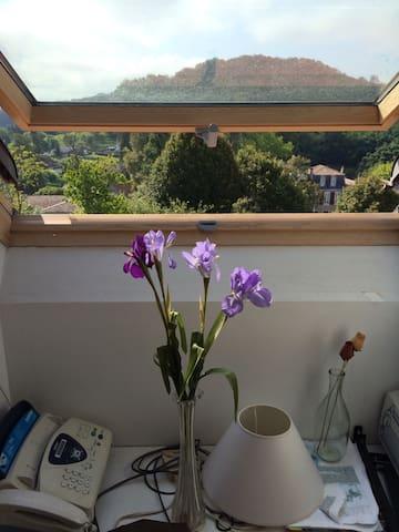 Room in penthouse flat - Salies de bearn - Leilighet
