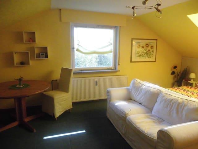 Friendly-Home (DG-Ferienwohnung) - Obersulm - Ev