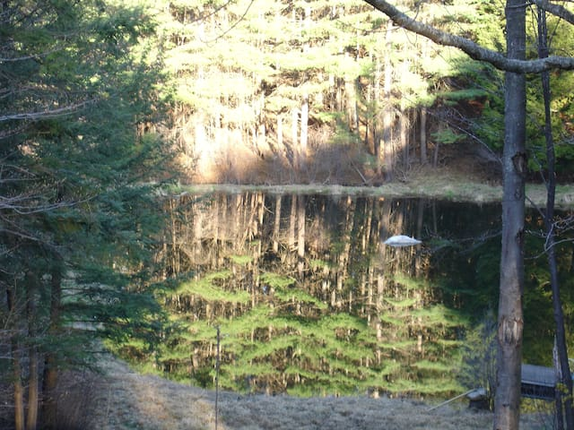 Blue Heron Pond - Corner of heaven - Brattleboro - Appartement