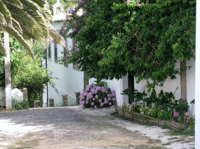 B&B Charm and comfort near Lisbon - Freiria - Bed & Breakfast