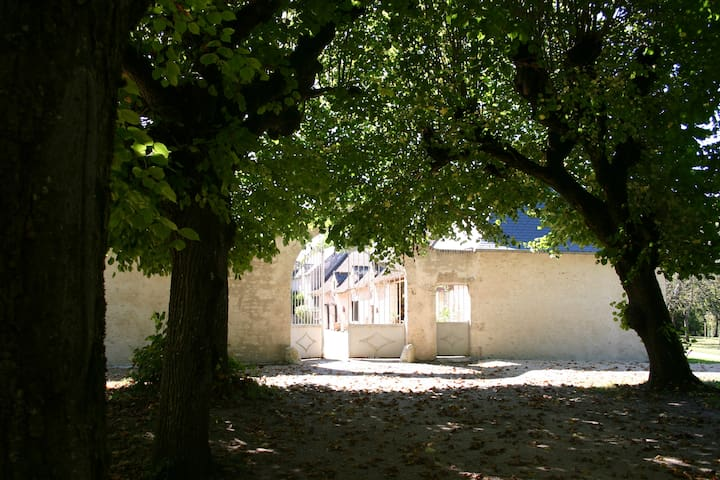Holiday house in Loire Valley - Blois - Hus