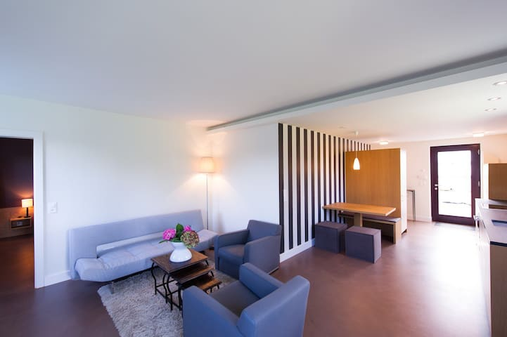 Precious 2½ flat, 68m2 Thalwil. - Thalwil - Appartement