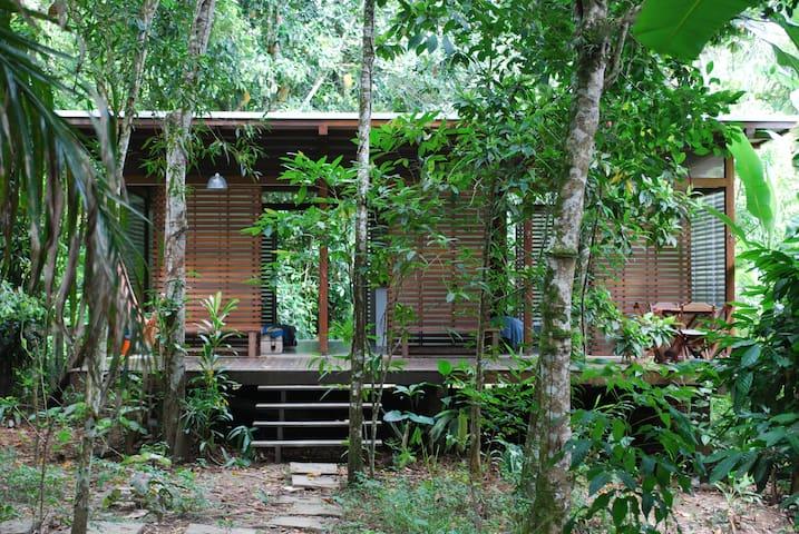 Juquehy -  House in the rainforest - São Sebastião - Maison