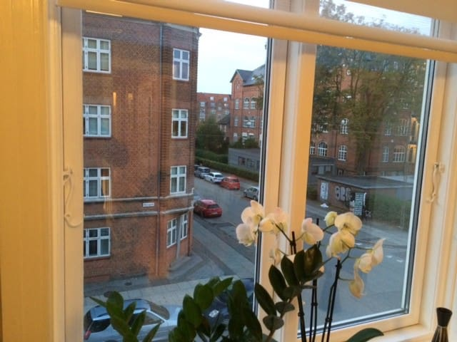 Cosy room in quiet location - Aarhus