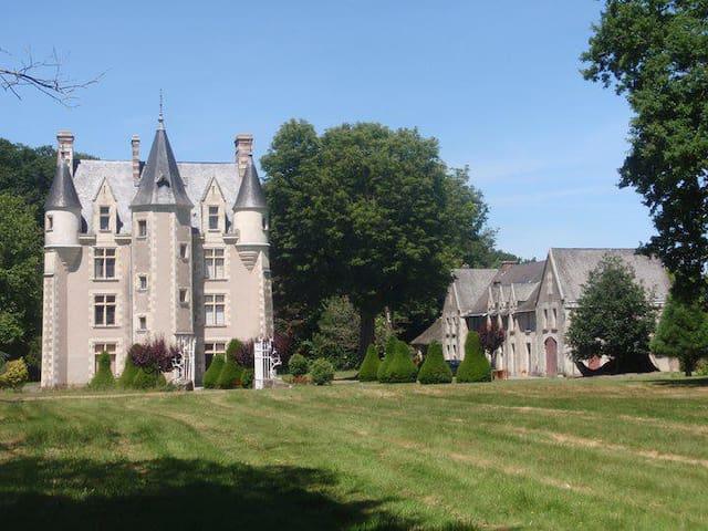 Gem Castle Hideaway in Loire Valley - Sainte-Christine - Kasteel