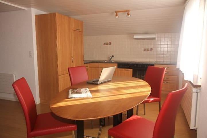 Appartment for Temporary Visitors - Berikon - Leilighet