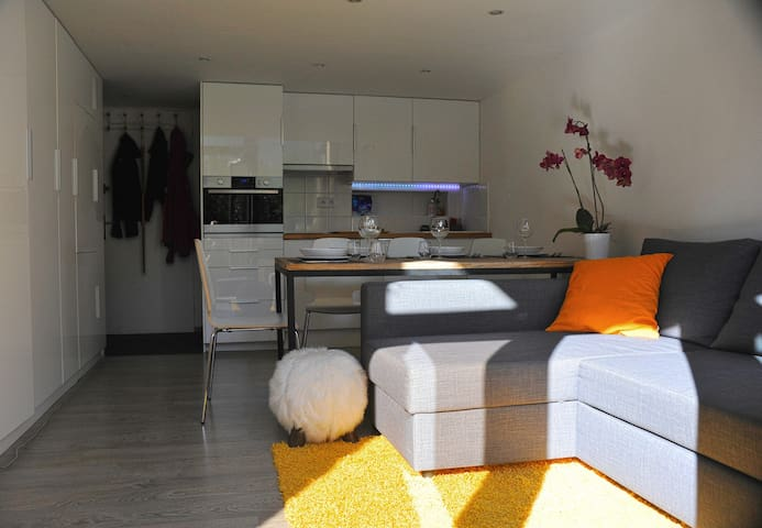 Luxury modern apartment for 2-4 - Argentiere