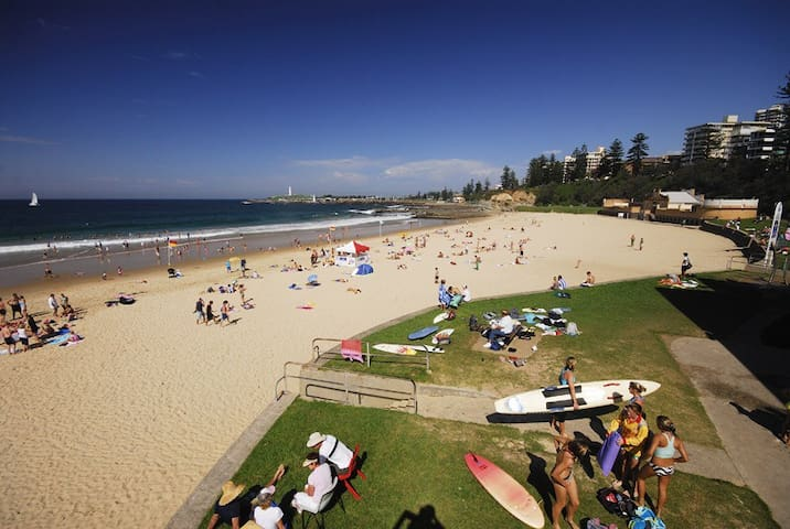 Room w/ ensuite. Beachside location - North Wollongong - Wohnung