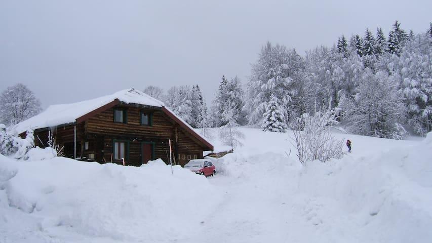 Maison en bois ronds - La Pesse - Ev