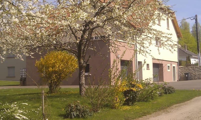 Chambre privée Rohrbach - Rohrbach-lès-Bitche