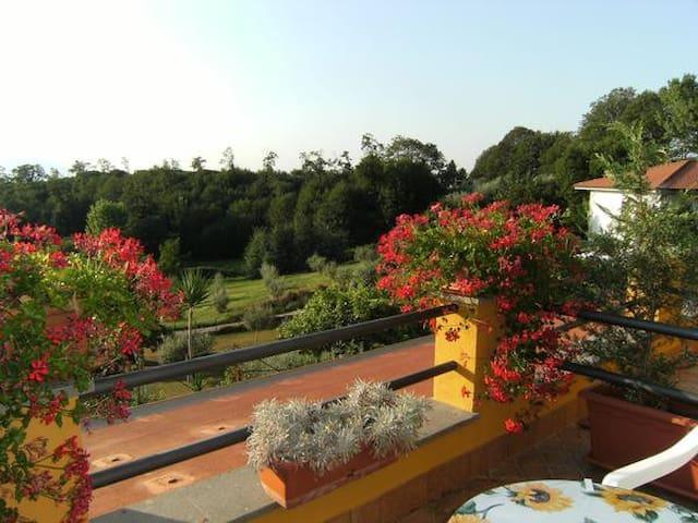 B&B - House Rental Arancia e Limone - Lariano