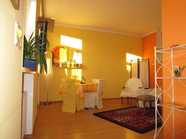 Sunny Apartment near at the City Center - Baden bei Wien - Daire