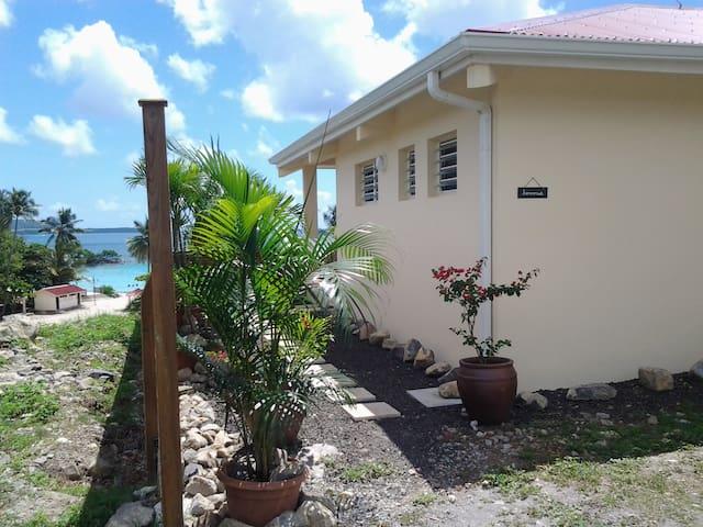 Villa en bord de plage Anse Figuier - Rivière-Pilote - Rumah