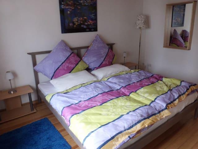 Gemütliche Wohnung in Saarbrücken - Saarbrücken - Leilighet