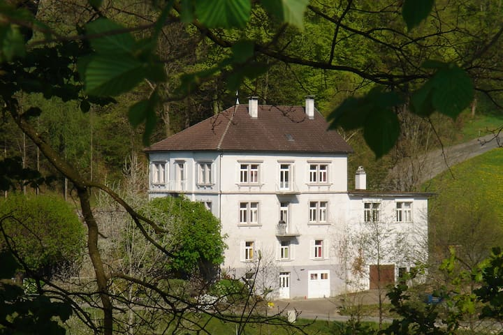 Two Bedroom Apartment for 6 - Kilchberg - Daire
