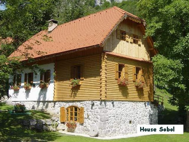 Holiday house Sobol in Croatia - Kočičin - Huis