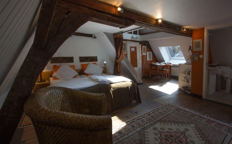 Artist habitat in the center (6pax) - Gand - Bed & Breakfast