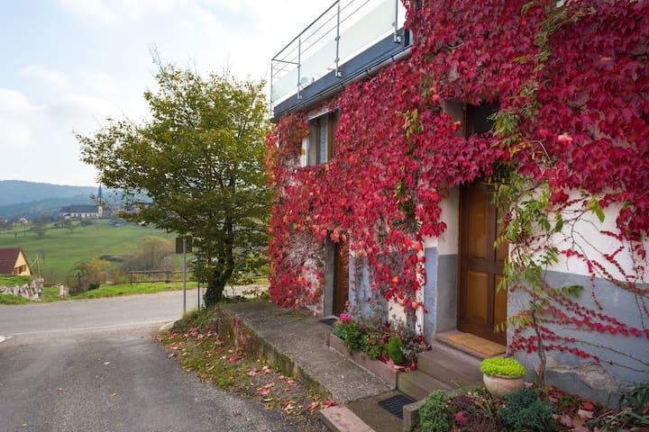 "Gîte ""Chez Line'´ - Thannenkirch - 公寓"
