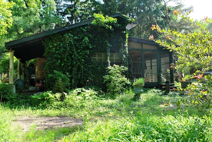 Floyd's  Cottage in Lakeside, Michi - Lakeside - Haus