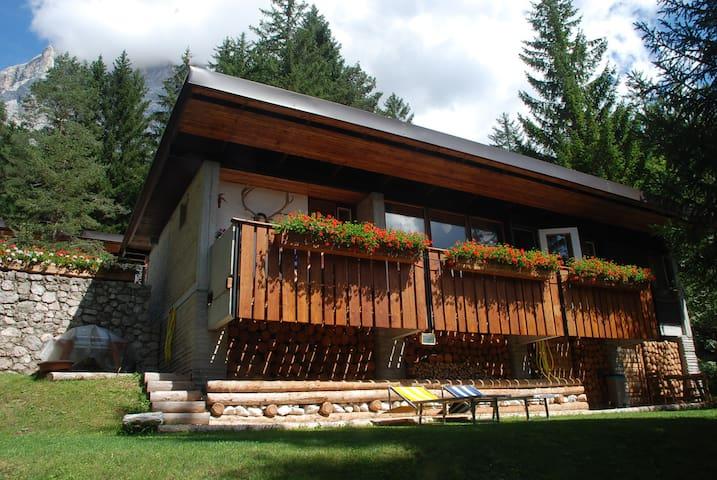 CHALET IN THE WOOD - Borca di Cadore - Chalet