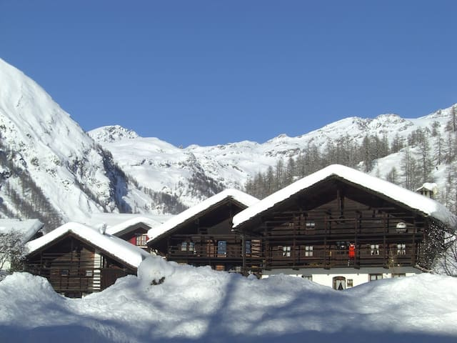 Large 3BD on the ski slopes - Gressoney-la trinite - アパート