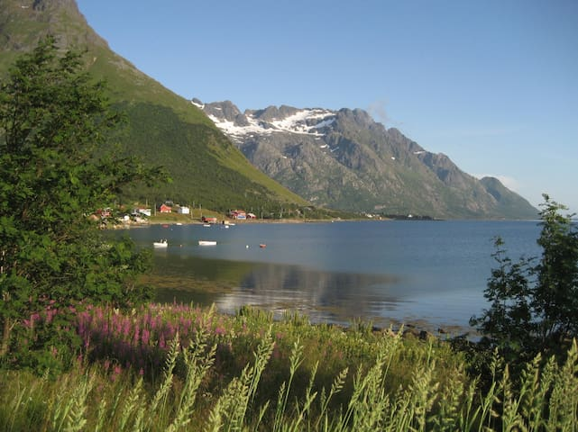 Charming house by the sea, Lofoten! - Laupstad - Huis