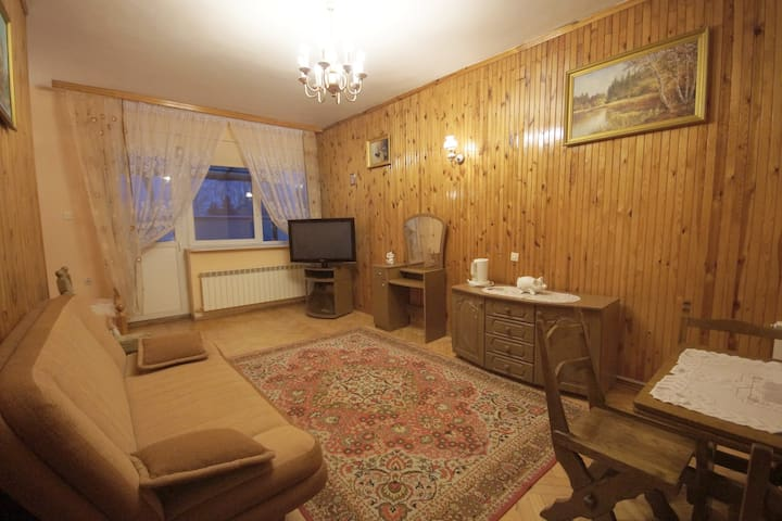 Classic apartment near Warsaw 1 - Wołomin - Appartement