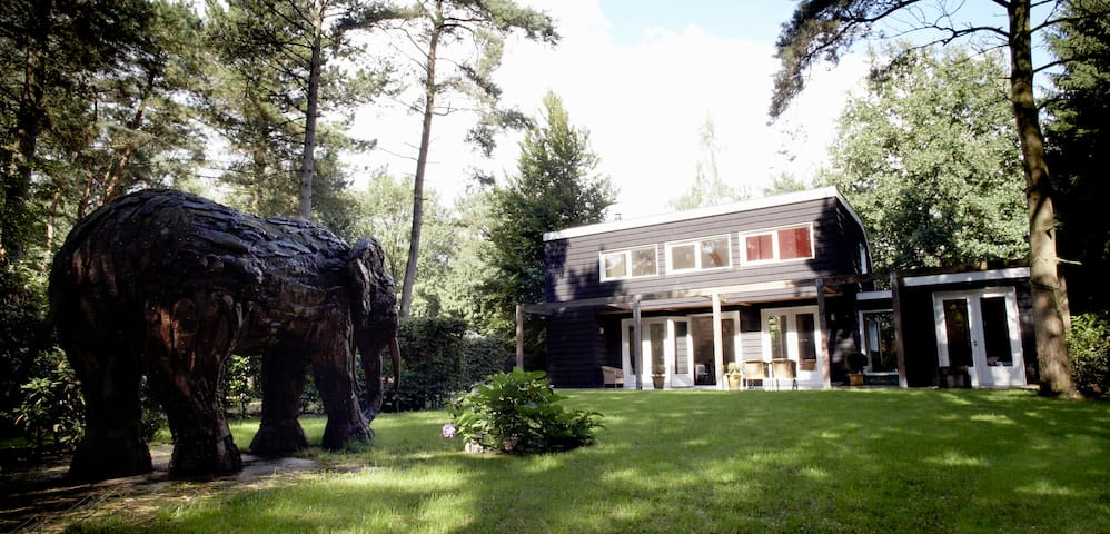Forest house 'The Helping Elephant' - Oirschot - Ev