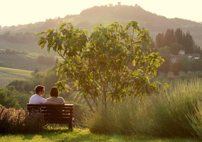 20 min to florence wifi wine view  - Noce - Leilighet