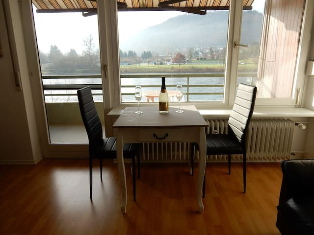 Nice flat with view over river Rhein - Küssaberg-Rheinheim