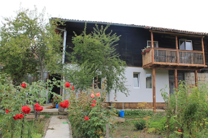 Guest House B&B Palitsi (Elena) - Palitsi - Bed & Breakfast