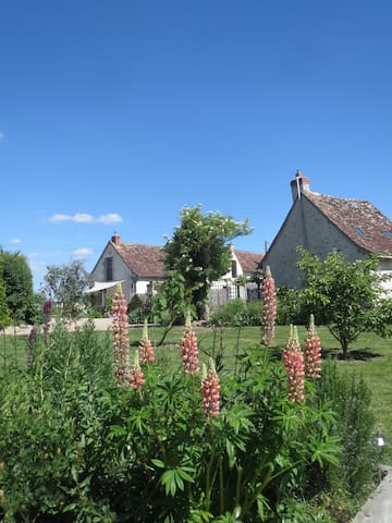 Loire Valley country cottage France - Le Grand-Pressigny