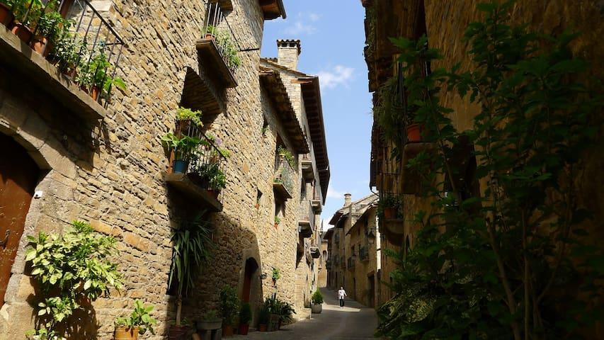 Precioso apto. medieval en Aínsa - Aínsa - Wohnung