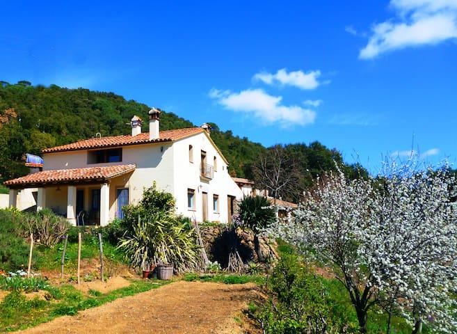 Beautiful old farmhouse with pool II  (PG-502) - Sant Mateu de Montnegre - Hus