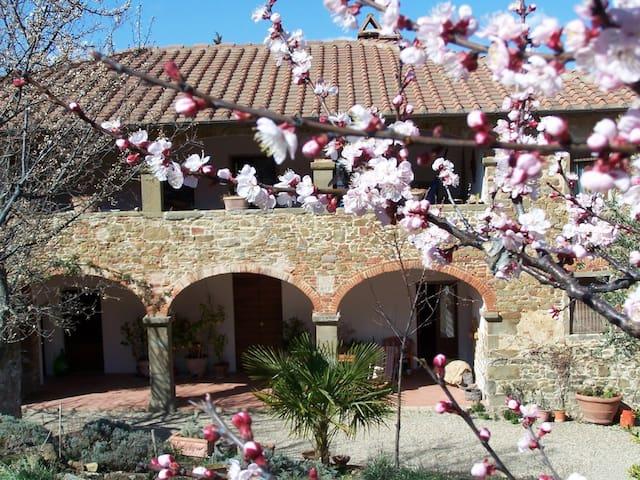 Lovely house in Tuscany - Civitella In Val di Chiana - Lägenhet