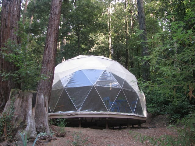 Geodome Retreat in Santa Cruz Mnts. - Уотсонвилл - Другое