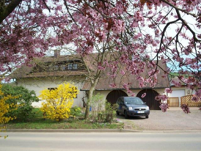 Wohnung auf dem Land-swiss boarder  - Wutöschingen - Lägenhet