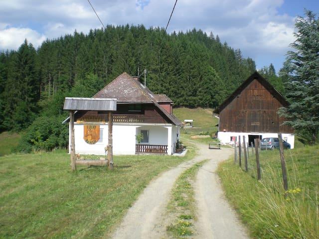 Reitbauernhof Luckyranch Ferienhaus - Strassburg - Rumah